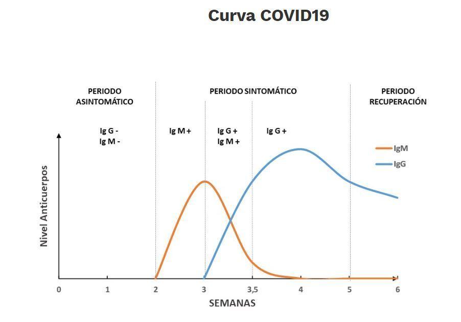 curva-anticuerpos-coronavirus-covid-19-madrid
