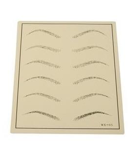 Plantilla micropigmentación microblading cejas pelo a pelo precio